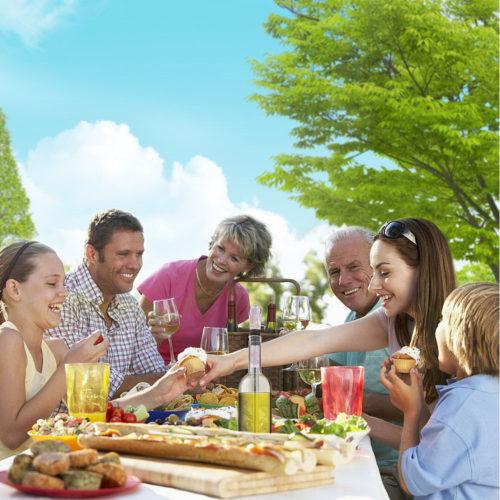 chill-stick-family-picnic-wine