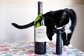 vacu-vin-wine-saver-pump-cat