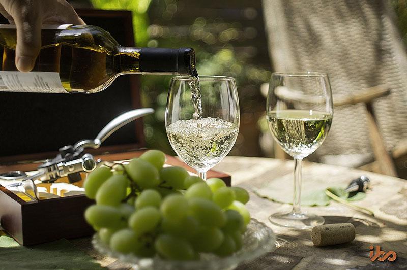 9 Piece Wine Accessory Set by IBO N' Vino