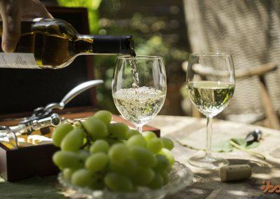 wine-accessory-set-ibo-vino-pouring-wine